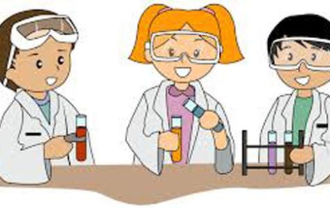 Science teachers successful in implementation of modeling teaching method